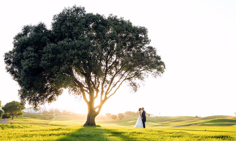 boda en san roque